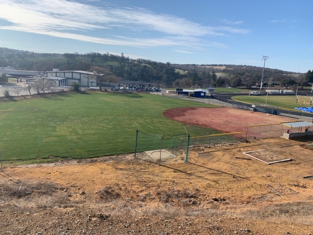 Softball with new sod outfield